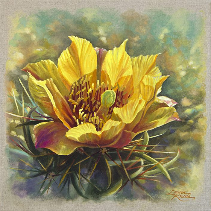 Cholla Brilliance, Cholla bloom, yellow, desert flower