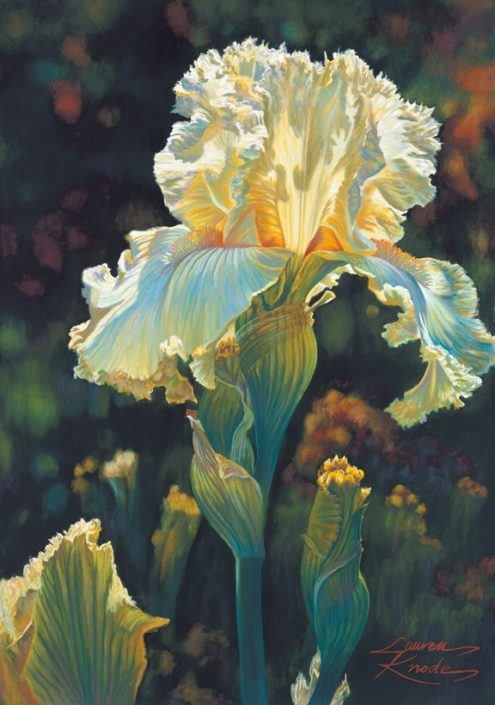 Golden Lace, Iris, Pastel Painting, Cream, yellow and green palette