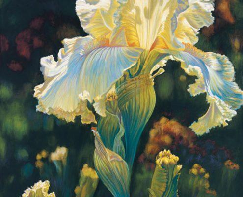 Golden Lace Botanicals