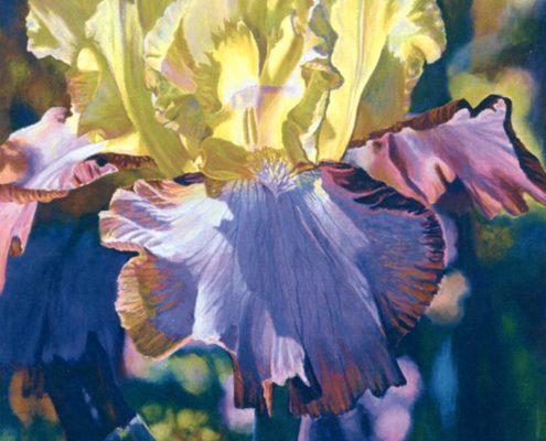 Heaven Sent Botanicals
