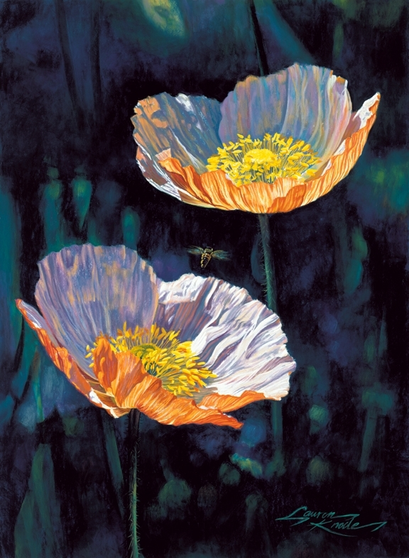 In Flight, Icelandic Poppies, bee in flight, orange, white, pink, palette, dark background