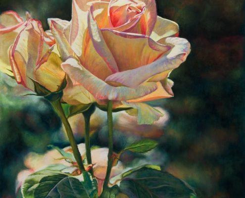 Lady Rose III Botanicals