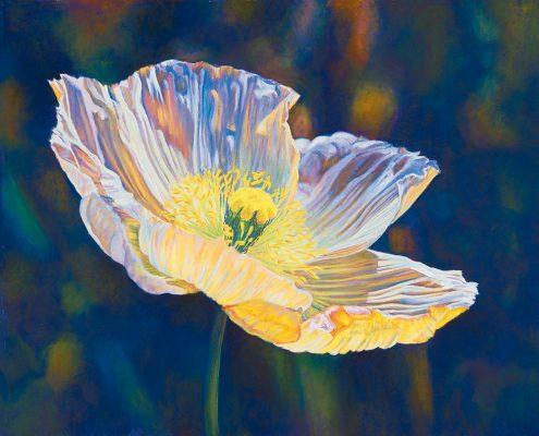 Opalescent Poppy Botanicals