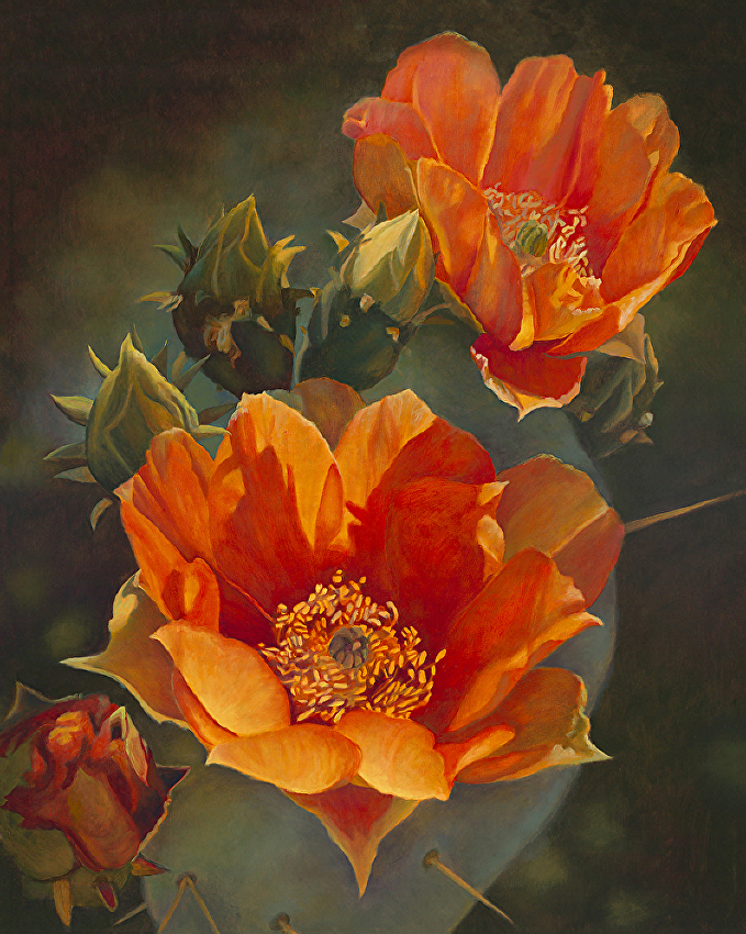 Botanicals, Persimmon Prickly Pear II, Orange prickly pear blooms, dark green background,