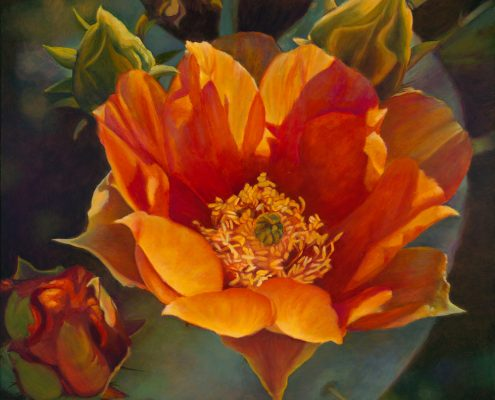 Persimmon Prickly Pear Botanicals Prints