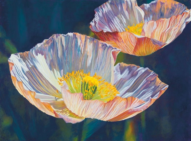 Poppy Complements, Icelandic Poppies, Pastel Painting, orance, purple, yellow, blue palette
