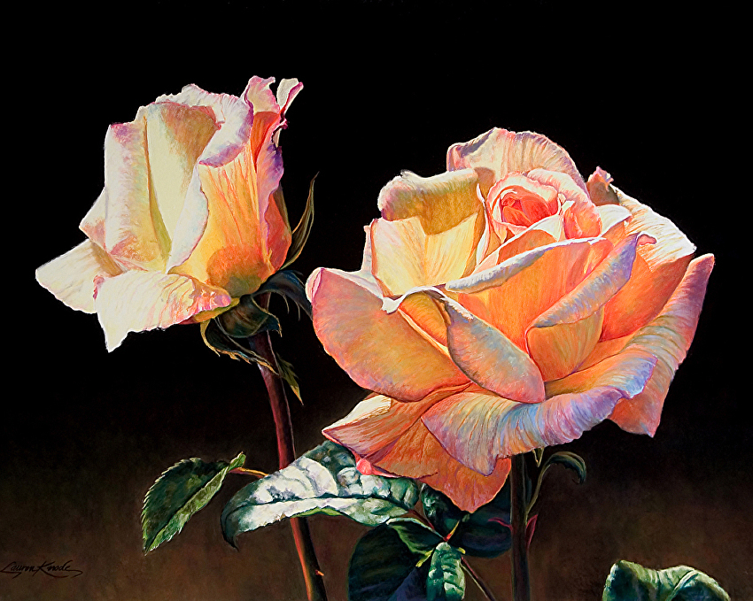 Rose Opalescence, Pastel painting, brilliant palette, roses, black background, rainbow palette