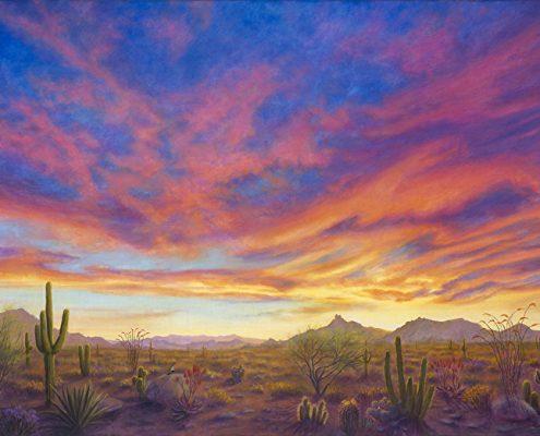 Sonoran Splender with Pinnacle Peak