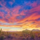 Sonoran-Splendor with Pinnacle Peak Sky and Landscape Giclee Print, brilliant southwest sunset, primarily red and magenta, southwest desert foreground with various cacti botanicals, Arizona, Pinnacle Peak and mountain range featured in distance
