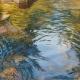 Oak Creek II Waterscape