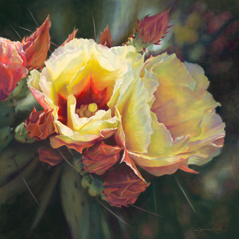 Awakening Botanicals, Prickly Pear Cactus Blooms, yellow with rose and pink buds