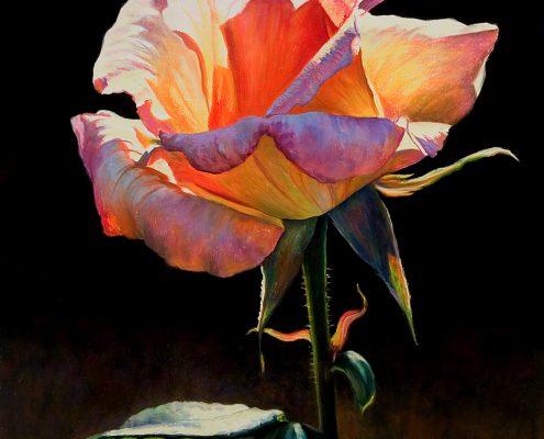 Radiant Rose Botanicals