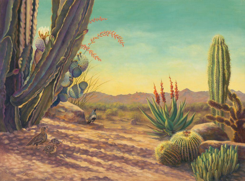 Desert Quail Outlook